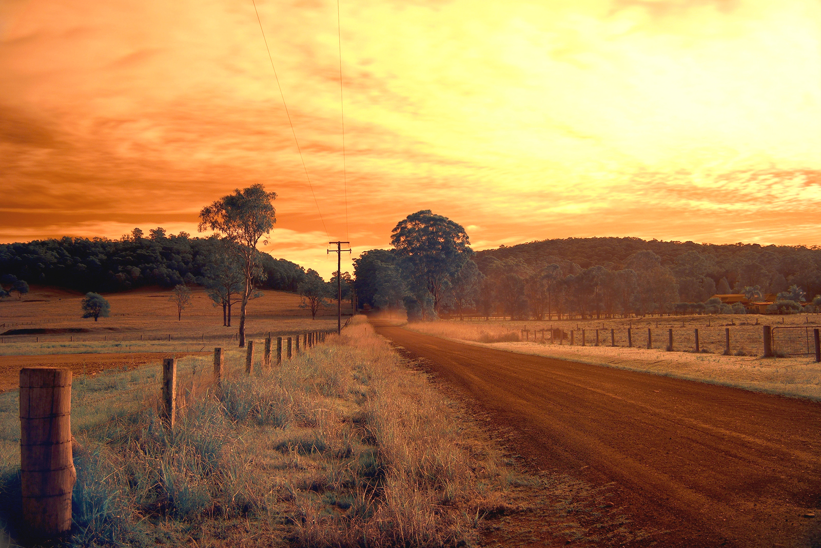 Australian Country road Nabiac in infrared